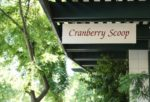 Cranberry Scoop